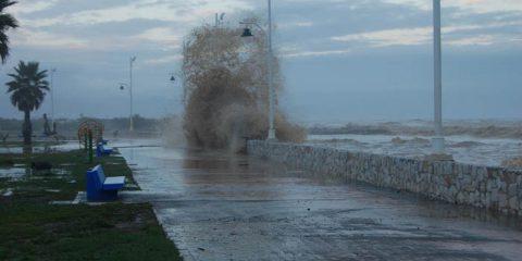 Paseo de Guadalmar