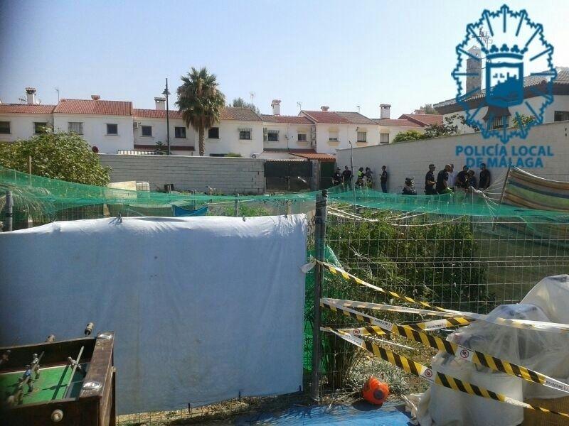 Fiesta ilegal en Guadalmar