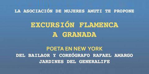 excursion flamenca