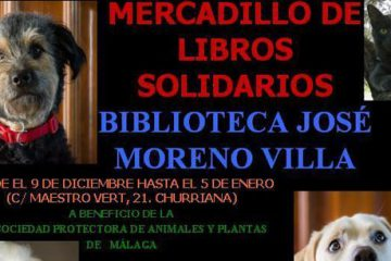 mercadillo solidario en Churriana