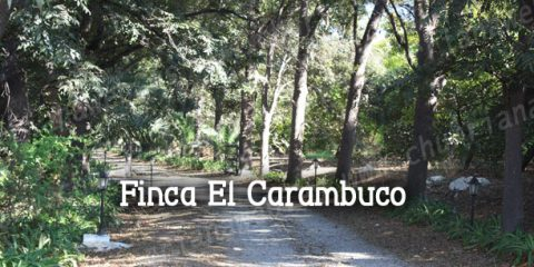finca el carambuco churriana